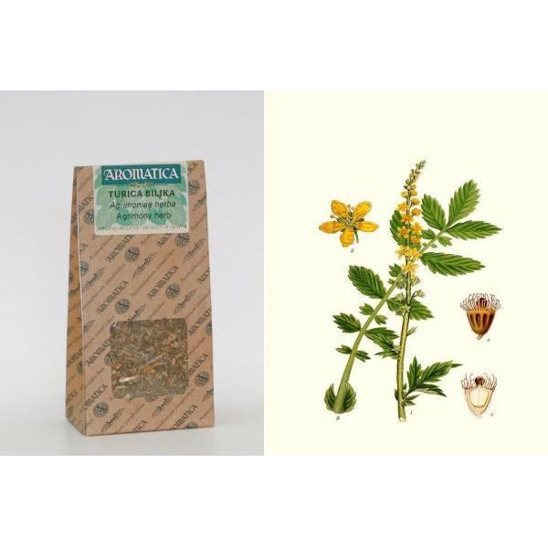 turica biljka 40g